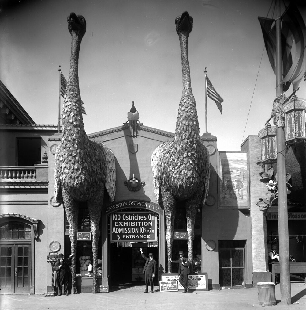 Many buildings along the Joy Zone used programmatic architecture, like these oversized ostriches, to attract potential customers. Image courtesy the Seligman Family Foundation.