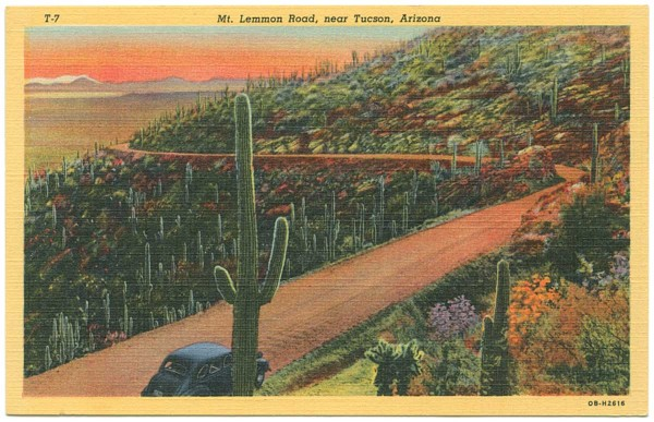 Final Mt. Lemmon Road postcard from 1940. Courtesy University of Texas Press.