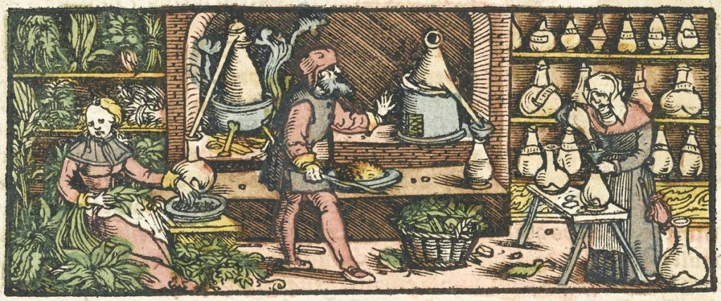 "This woodcut engraving from the mid-16th century depicts the process of distilling essential oils from plants with a conical condenser. Via the <a href=""http://wellcomeimages.org/"">Wellcome Library, London</a>."