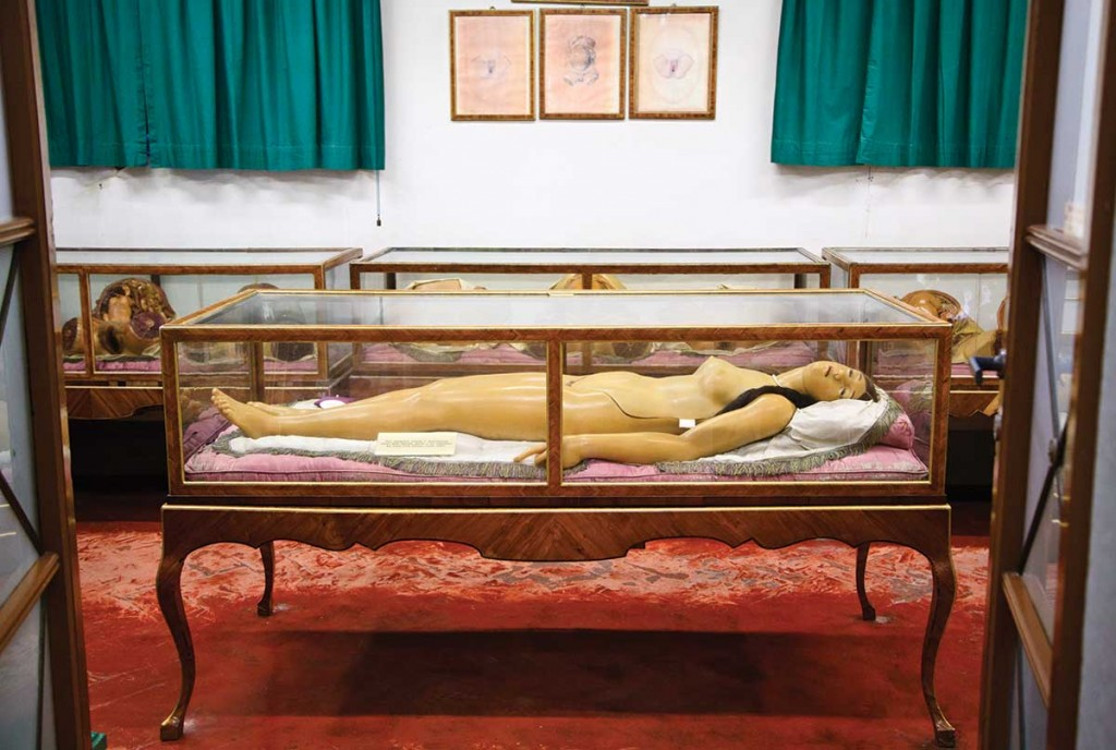 The most iconic dissectible wax Venus, known as the Medici Venus, seen on display at La Specola, in Florence, Italy. Courtesy the Natural History Museum of Florence. Photo © Joanna Ebenstein.