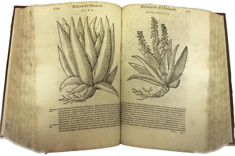aloe-book
