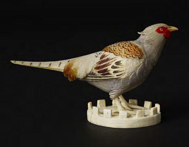 bird-solo