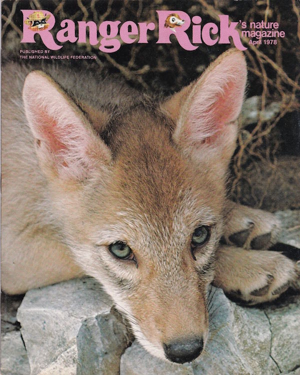 """Ranger RIick's Nature Magazine,"" published by the National Wildlife Federation, encourages kids to think about pollution and environmental solutions. (Via eBay)"